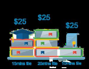 Transcription Costs